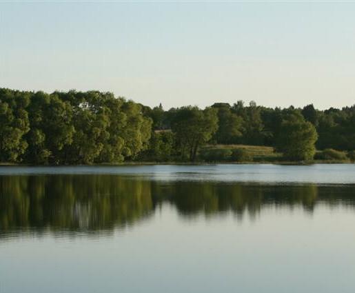 Ežeras. Kurtuvėnų regioninis parkas | siauliurajonas.lt nuotr.