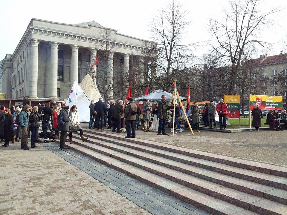 Mitingas prie Seimo | Alkas.lt, A.Rasakevičiaus nuotr.