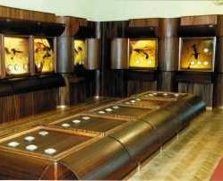 Palangos gintaro muziejaus ekspozicijų sal