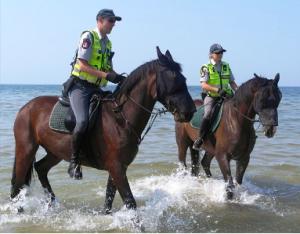 Patruliuojantys žirgai | Palangos miesto savivaldybės nuotr.