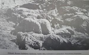 Petrašiūnai   Kauno sąjūdžio nuotr.