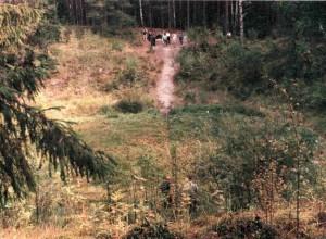 Ilumetsa meteoritinis krateris Estijoje | Alkas.lt, J.Vaiškūno nuotr.