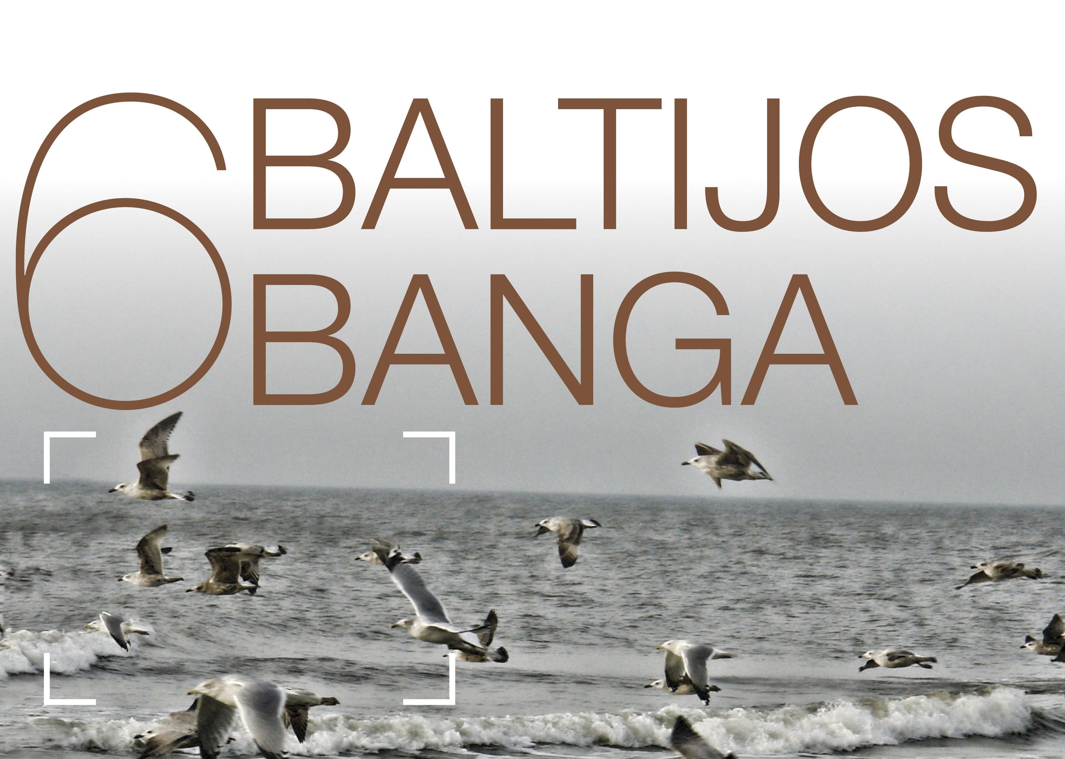 Baltijos banga 2014