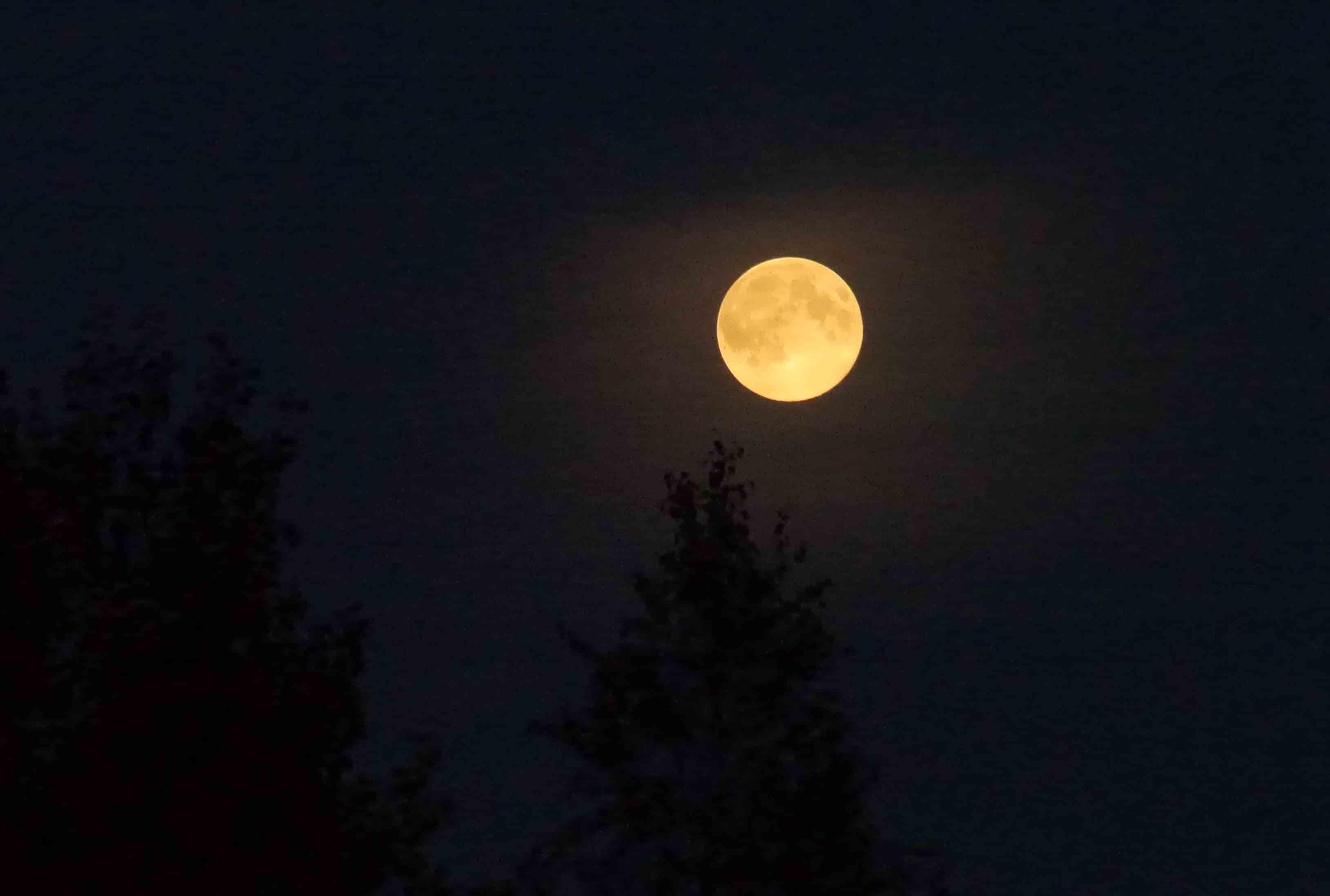 "Rugpjūčio 10 d. ""supermėnulis"" | Alkas.lt, J.Vaiškūno nuotr."