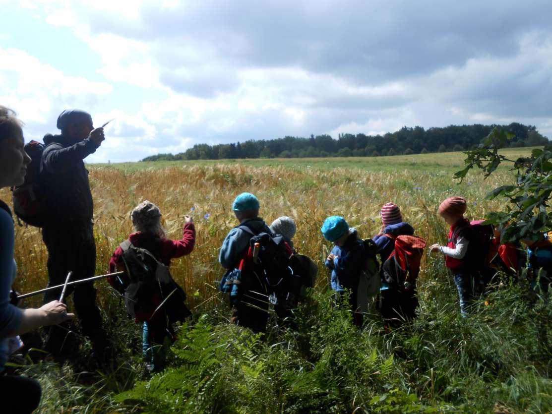 Vaikams pamoka prie javų lauko Vokietijoje |  J. Dapšausko nuotr.
