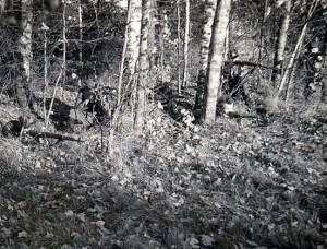 Kęstucio apygardos partizanai | Lietuvos genocido ir rezistencijos tyrimo centro archyvų nuotr.