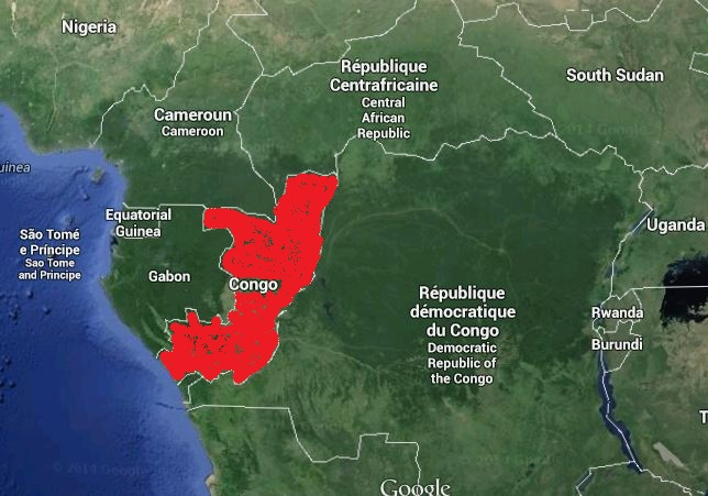 Afrika Karta Guinea.Ebolos Virusas Pleciasi į Centrine Afrika Alkas Lt