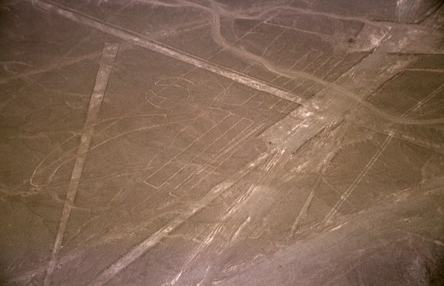 Didžiausias Naskos slėnio geoglifas: 285 metrų pelikanas   UNESCO nuotr.