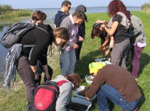 Simpoziumo dalyviai iš Ispanijos, Prancūzijos, Vokietijos, Slovakijos, Lenkijos ir kitų šalių buvo nustebinti menturdumblių gausa Žuvinte