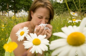 alergija   altered-states.net nuotr.