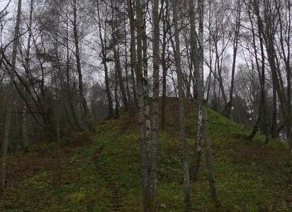 Samylų piliakalnis |  turizmogidas.lt nuotr.