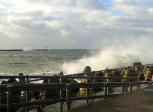 vėjas audra jūra D.Lukauskienės nuotr.