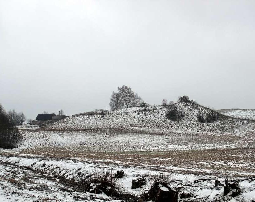 Belezų kaimo piliakalnis, žvelgiant iš šiaurės (nuo Toleikių senovės gyvenvietės) | V. Vaitkevičiaus nuotr.
