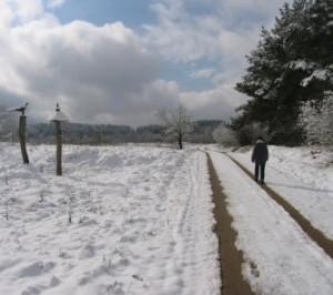 kelias ziema_vstt.lt