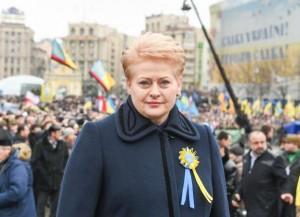 Dalia Grybauskaitė Maidane, 2015-02-22 | lrp.lt nuotr.