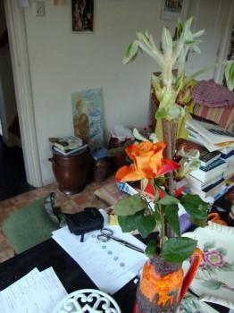 Savas kambarys.Foto gaiva Paprastoji