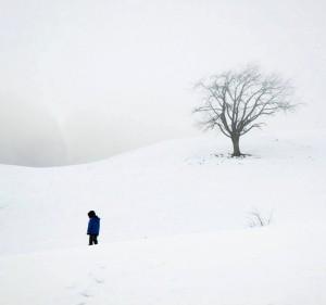 Baltumai. Nuotrauka iš interneto svetainės