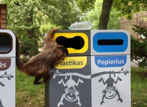 atlieku rusiavimas_zoologijos sodo nuotr.