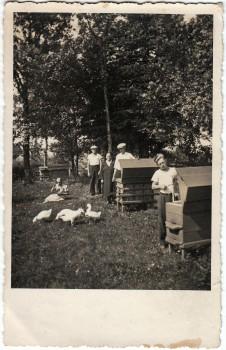 8. Bitynas. Nežinoma vietovė. Nuotrauka iš asmeninės Petro Kaminsko kolekcijos.