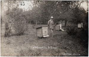 9. A. Skuodžio bitynas. Biržai, 1929. Nuotrauka iš asmeninės Petro Kaminsko kolekcijos.