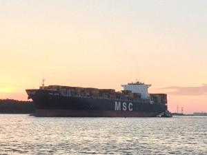 MSC ASYA - 1