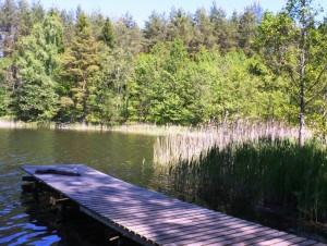 Tiltelis | Alkas.lt, D.Vaiškūnienės nuotr.