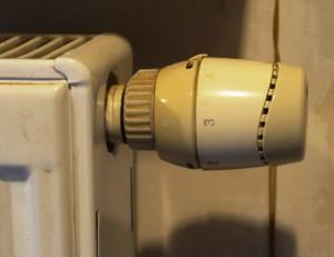 radiatorius siluma_DaivosV.foto