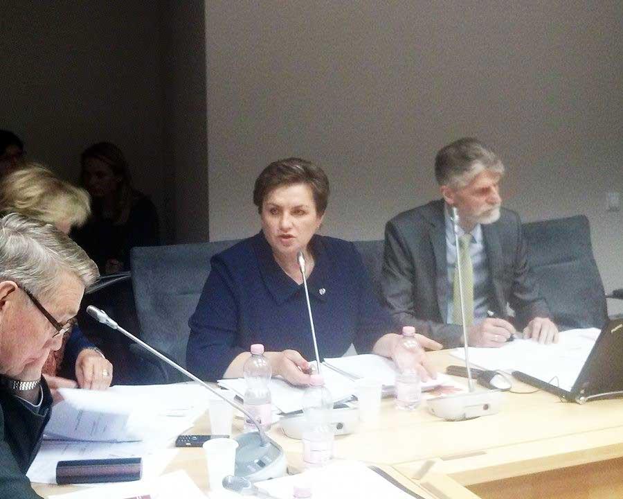 Sveikatos reikalu komiteto posedis-Dangute Mikutiene-j.dapsausko-nuotr