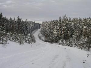 Aukstaitijos nacionalinis parkas ziema_vstt.lt