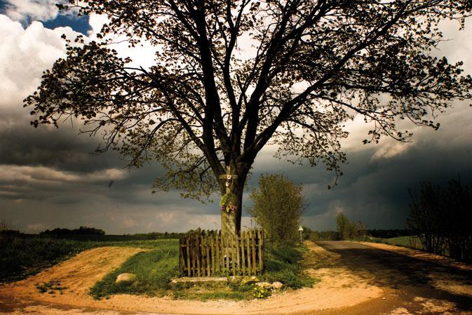 albumas-S.Birgelio nuotr