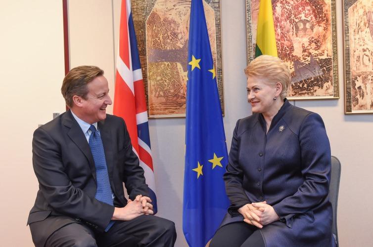 Deividas Kameronas Ir Dalia Grybauskaitė | lrp.lt, R. Dačkaus nuotr.