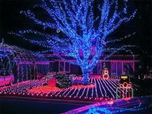 blog.christmaslightsetc.com nuotr.