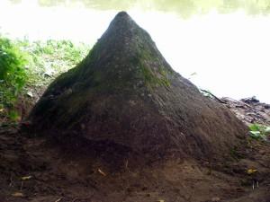 2 pav. Akmens vaizdas nuo Plikakalnio pusės. | Aleksandro Stabrausko nuotrauka.