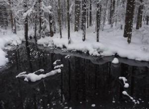 Pilelio šaltinis | Žemaitijos nacionalinio parko direkcijos nuotr.