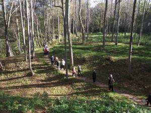 Molavenu piliakalnis_Dubysos reg.parko nuotr