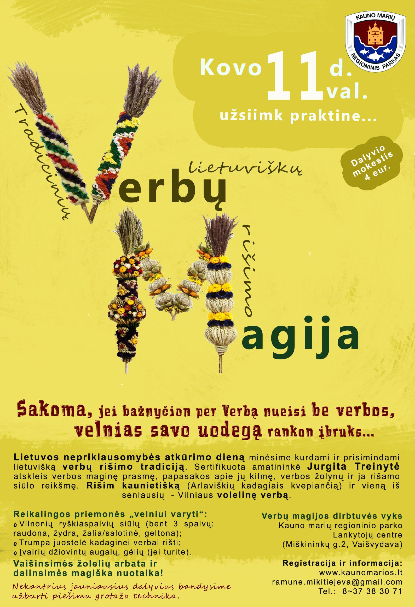verbuMagija2016