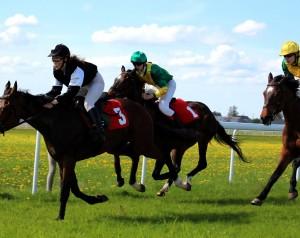 Pernai žirgas vardu Bonita Morena (Nr 3) laimėjo Raseinių hipodrome vykusį 1600 m bėgimą. | rengėjų nuotr.