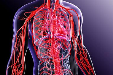 2 laipsnio hipertenzijos rizikos laipsnis