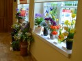 Peozijos pavasaris Poskonyse_rengeju nuotr