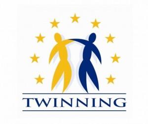 Europos Sąjungos Dvynių programa