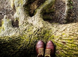 Namuose su gamta: išgirsti, suprasti, veikti | rengėjų nuotr.