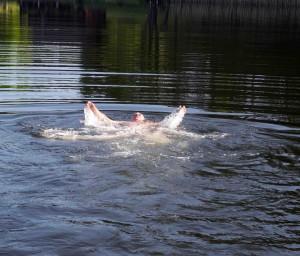 http://alkas.lt/2016/07/21/vandens-telkiniu-tvarkytojai-nepritaria-cheminiam-ezeru-valymui/