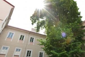 Istorijos_fakulteto_fragmentas_E.Kurausko nuotrauka