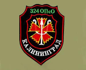 Rusijos psichologinių operacijų dalinio karių emblema | technologijos.lt nuotr.