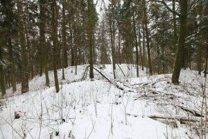 vepriu-piliakalnis-dariaus-stonciaus-nuotr