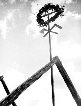 """Gyvybės medis namo stogo rentimo pabaigtuvių ,,vainike"""": dvyniškų dailidės darbo įrankių po saulės vainiku simboliai."""