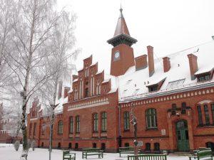 klaipedos-universiteto-baltijos-regiono-istorijos-ir-archeologijos-institutas-v-safronovo-foto