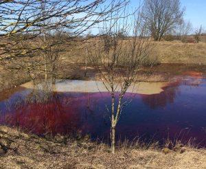 Tvenkiny su teršalais | Vilniaus RAAD nuotr.