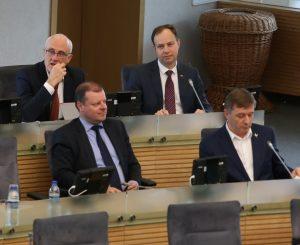 Seimas | Alkas.lt, A. Sartanavičiaus nuotr.