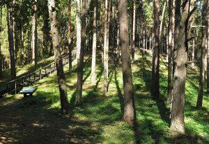 Palatavio piliakalnis iš pietryčių pusės | Anyksciai.lt nuotr.